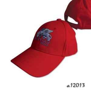Long visor baseball cap with fancy embroidery detail